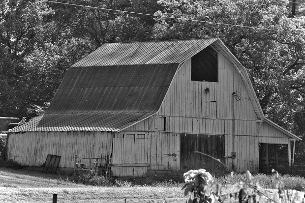Building a barn turned into building a fraud case for a Cannon County victim