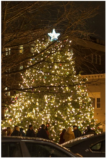Main Street Murfreesboro's Lighting of the Official Rutherford County Christmas Tree