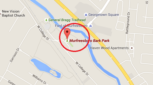 Public Intoxication Arrest and Booking took about 4-hours after arrest at the Murfreesboro Bark Park