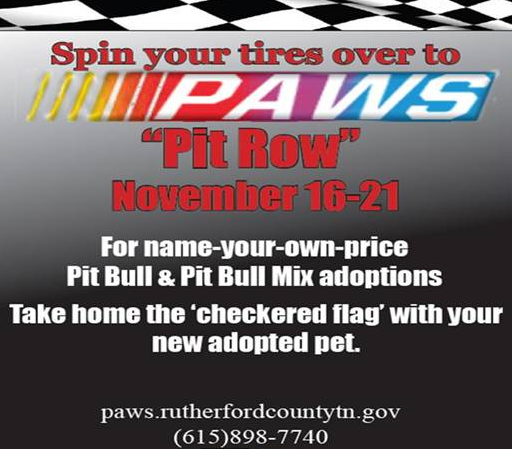 PAWS has Pit Bulls in Murfreesboro for whatever you want to pay, even a penny