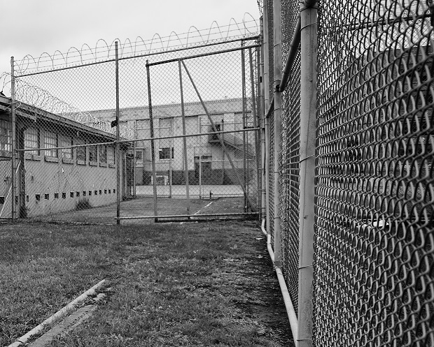 Survey Says: 1 in 10 TN Children Has or Had an Incarcerated Parent