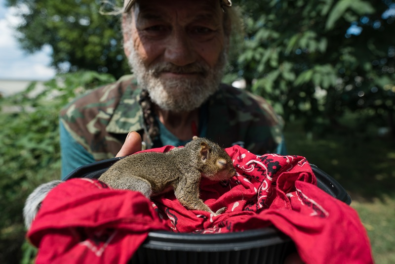 Homeless Veteran in Murfreesboro Nursing Baby Squirrel Back to Health