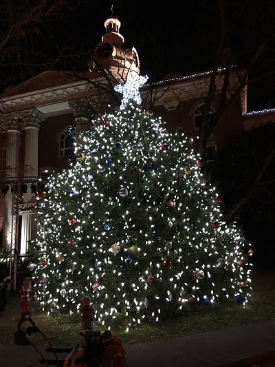 Will you donate a Christmas Tree for the Murfreesboro Square?