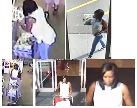 Smyrna Police are seeking help from the public after a recent theft