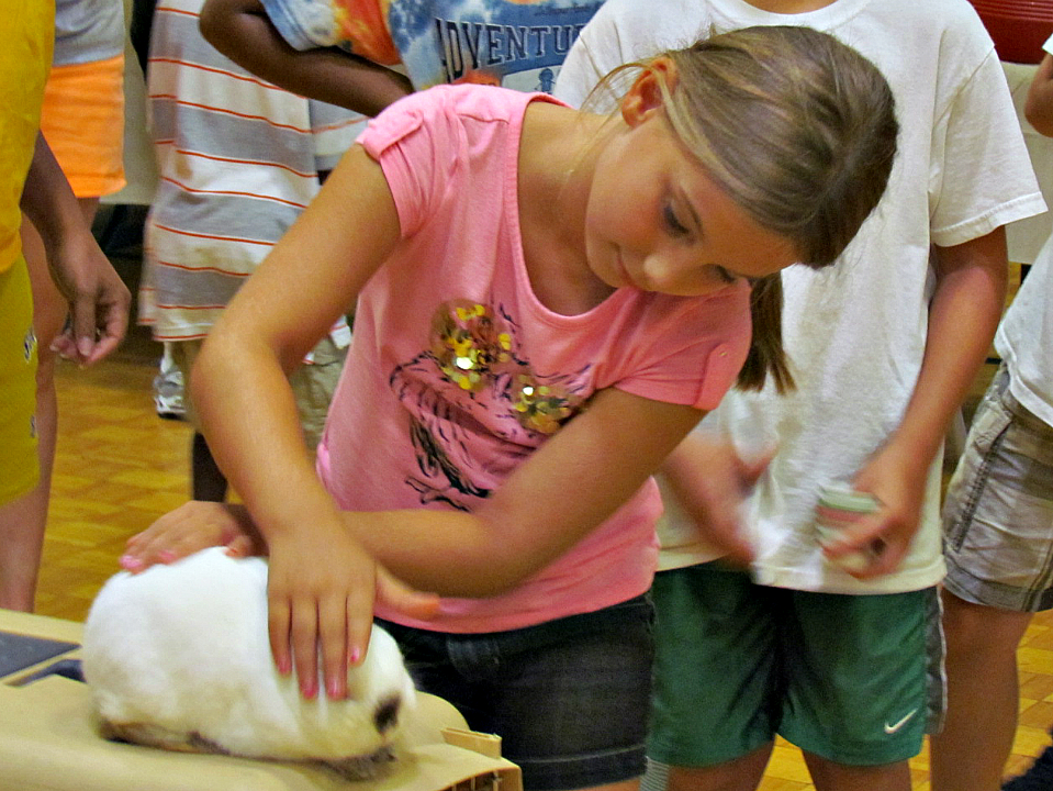 Water Days, art, animals and MORE in LaVergne
