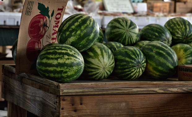 Rutherford County Farmers Market Open Tuesday and Friday this Week