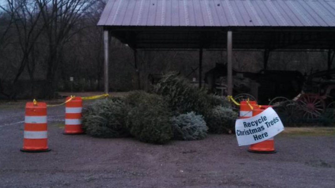 Christmas Tree Dumping Locations in Rutherford County
