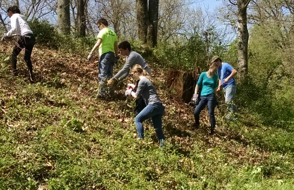 Tennessee State Parks Seek Volunteers for Annual Weed Wrangle March 7th