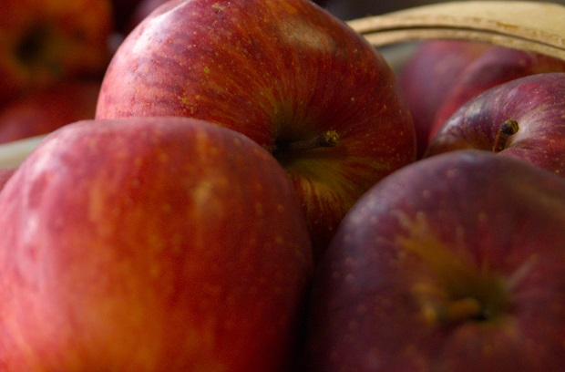 Apples for Sight in Rutherford County