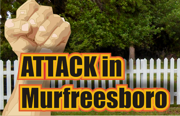 Murfreesboro woman attacked in her driveway