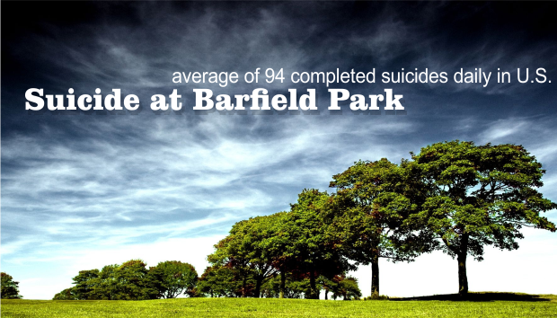 UPDATE: Suicide in Barfield Park on Saturday evening