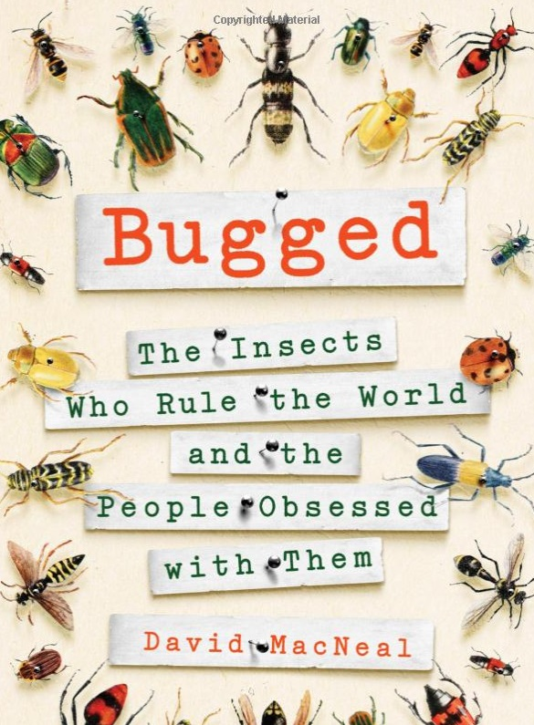 The Buzz on Bugs: They're Not Always a Pest