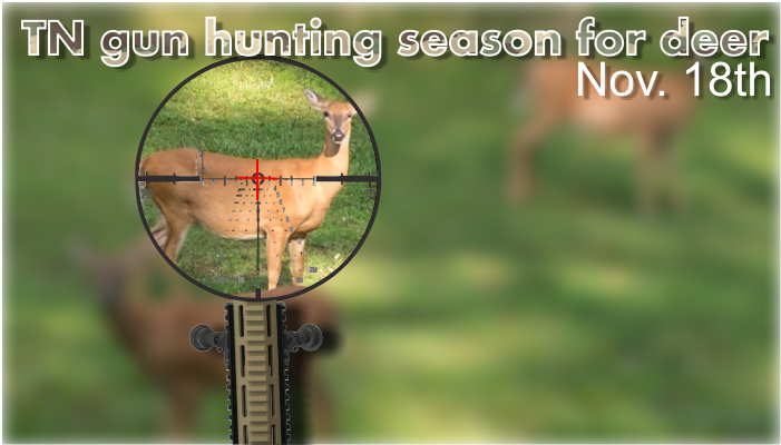 Gun Season for Deer Opens Saturday