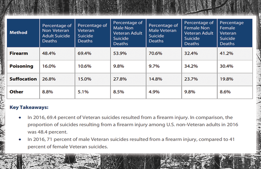 Suicide Among the Local Veteran Population