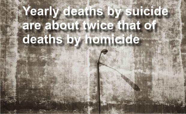 Suicide reported in a Murfreesboro park