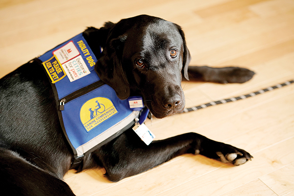 New Employee at Vanderbilt Children's has a Paws-itive Impact
