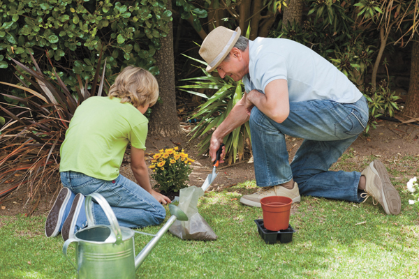 Spring means time to feed, fertilize and mulch