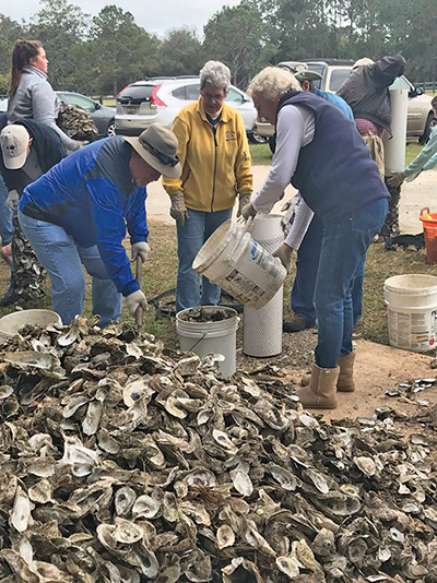 Oyster shell recycling program seeks to rebuild beds
