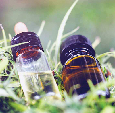 CBD just one of many natural compounds of cannabis plant