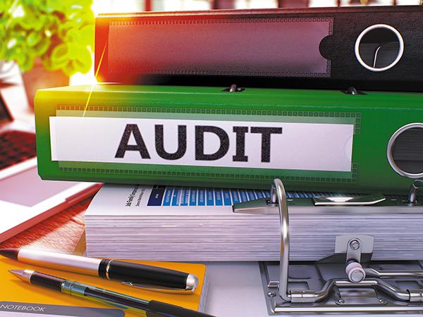 Beware the ZPIC Audit