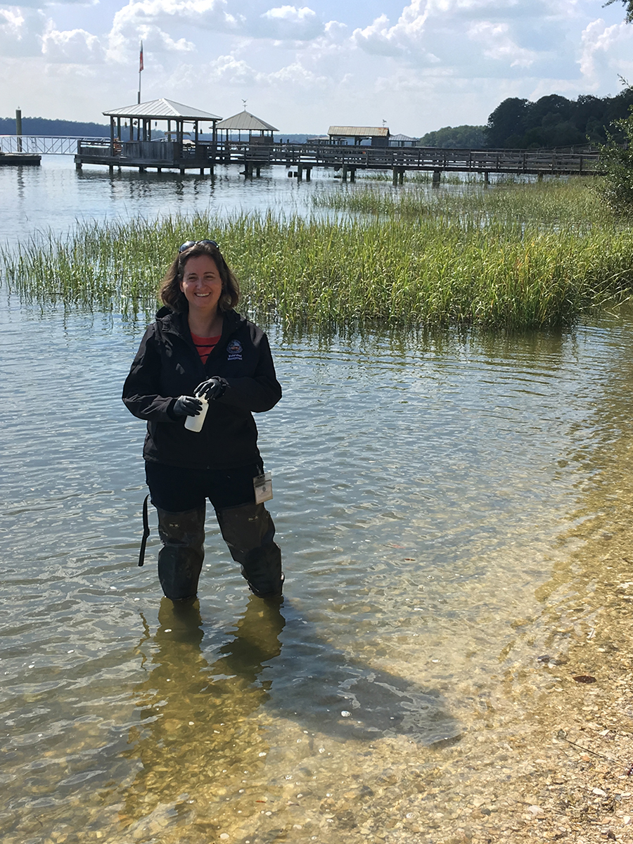 Effects of Hurricane Matthew on the May River researched