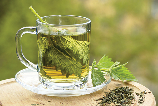 Nettle can be used as a tea to help relieve allergies.
