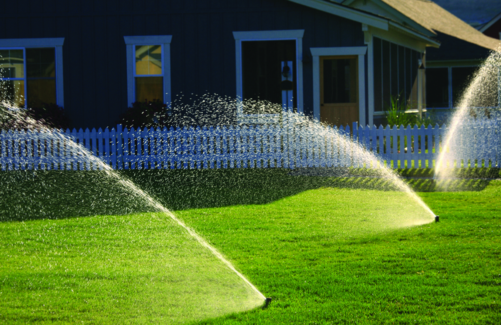 Water, fertilize, prune and watch out for lawn pests