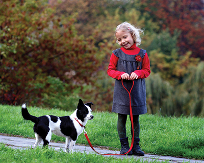 Letting kids train family dog leads to great relationships