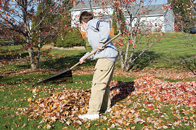 The year is ending, but not your gardening chores