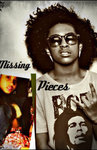 Missing Pieces♥ A Princeton Love Story
