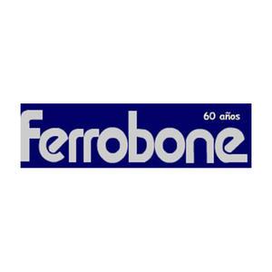 Logo ferrobone
