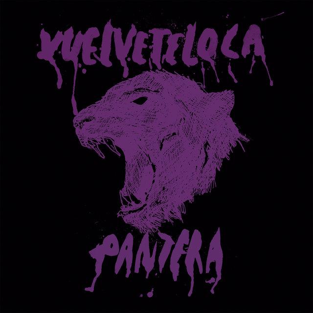 Vl_pantera