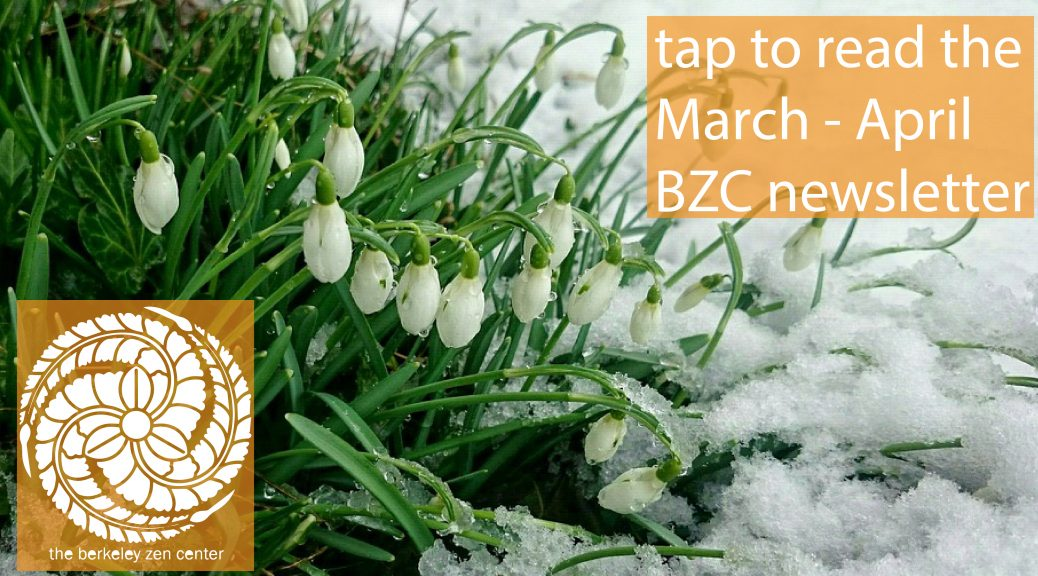 bzc_newsletter_slide-0113