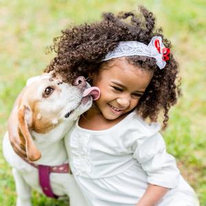 Shutterstock 152097917