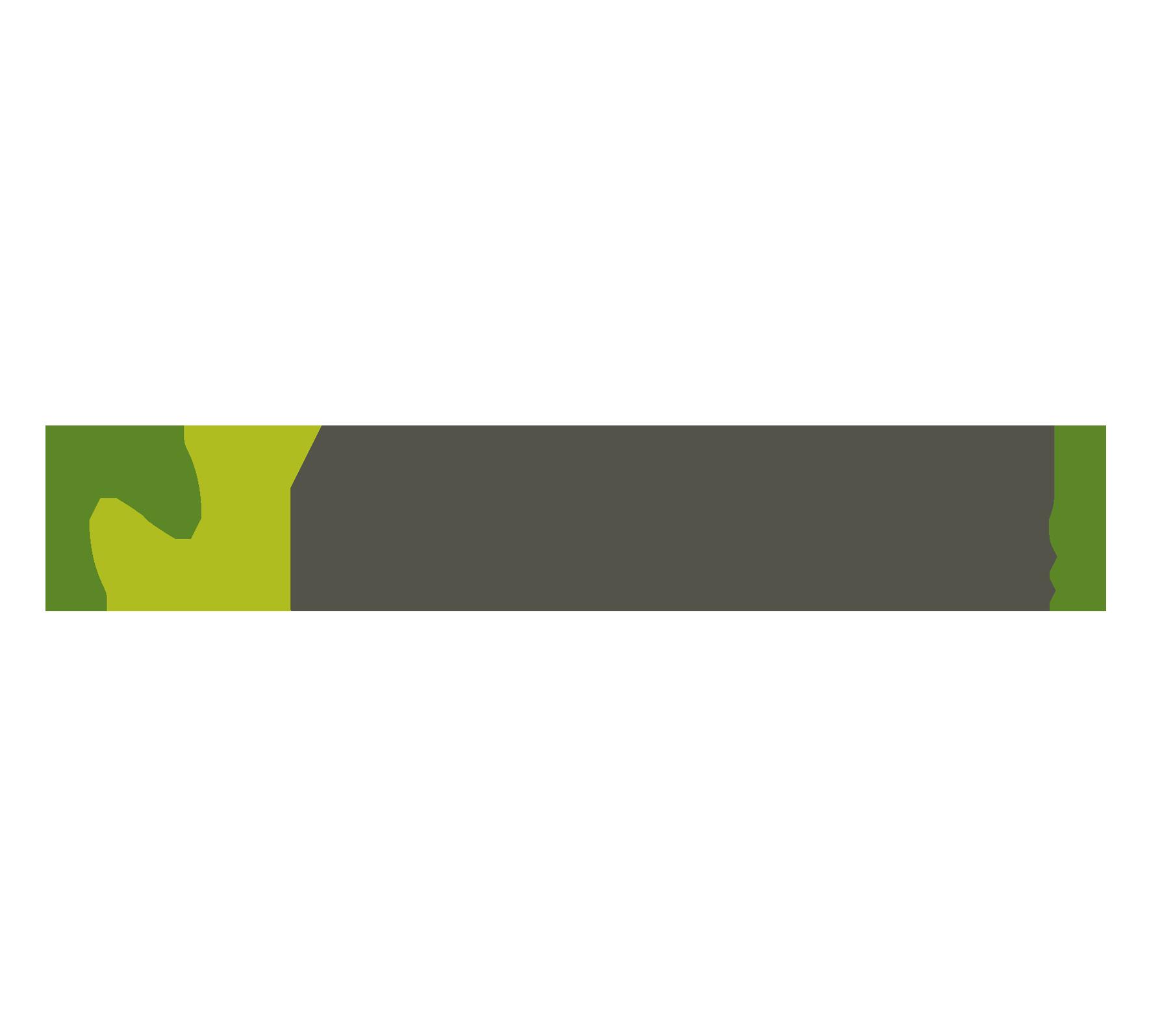 Nellson logo rgb copy