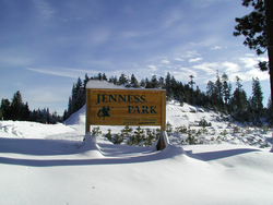 Help Jenness Park Go Green 