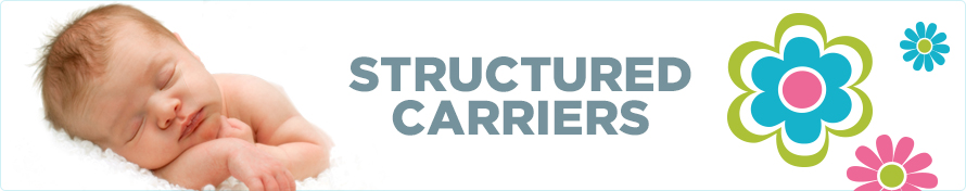 Structured Carriers