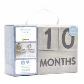 Pearhead Wooden Age Block Set