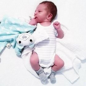 Kippins Billie Organic Comfort Toy