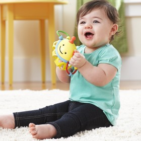 Skip Hop Explore & More Bee Roll Around Rattle