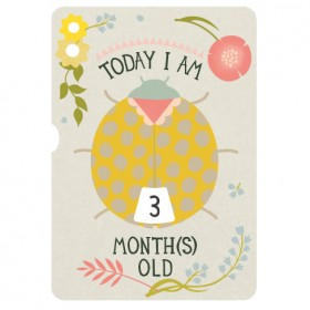 Milestone Baby's First Year Turn Wheel Photo Card
