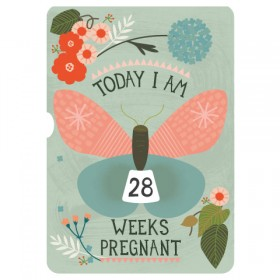 Milestone Pregnancy In Weeks Turn Wheel Photo Card