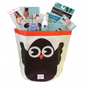 Cheeky Monkey Pregnancy Bin Gift Basket