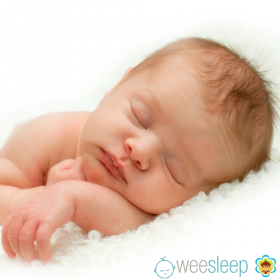 WeeSleep Infant & Toddler Sleep Workshops