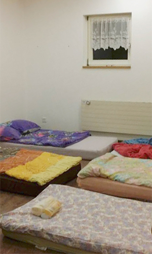 buy coleman air mattress repair kit
