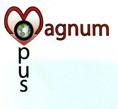 Website for Magnum Opus Landscape Contracting