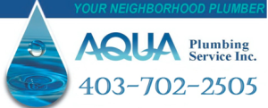 Website for Aqua Plumbing Services Inc