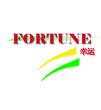 Website for Fortune Property Services & Construction