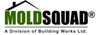 Website for Mold Squad Ltd.