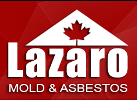 Website for Lazaro Mold and Asbestos